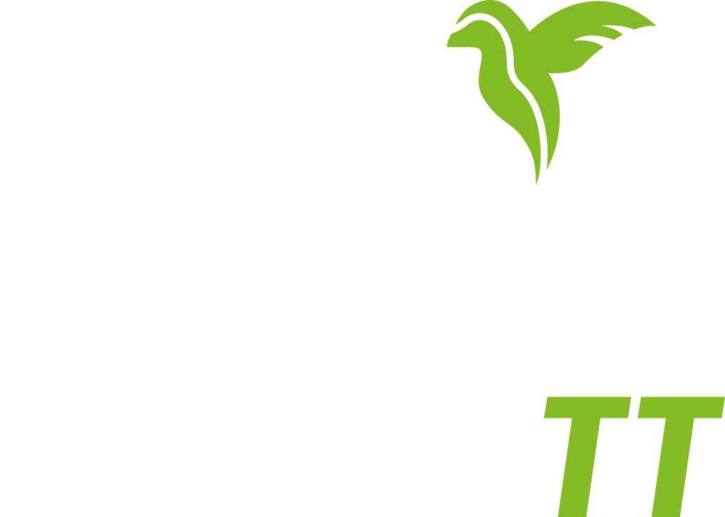 Carbon Truck & Trailer GmbH